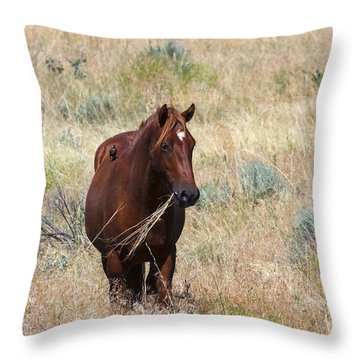 The Odd Couple Throw Pillow by Mike  Dawson