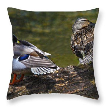 The Perfect Mallard Couple Throw Pillow by Sandi OReilly