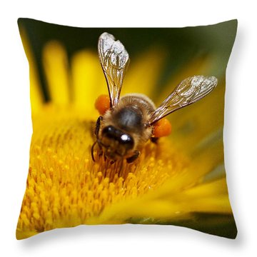 The Pollinator Throw Pillow by Rona Black