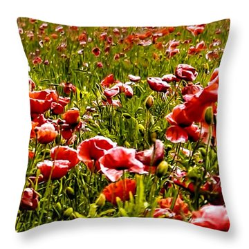 The Poppy Field Throw Pillow by Trevor Kersley