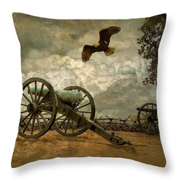 The Price Of Freedom Throw Pillow by Lois Bryan