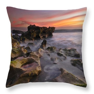 The Reef Throw Pillow by Debra and Dave Vanderlaan