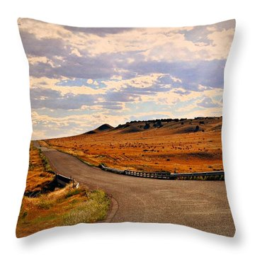 The Road Less Traveled Throw Pillow by Marty Koch