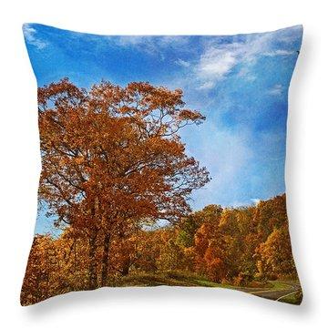 The Road To Autumn Throw Pillow by Kim Hojnacki