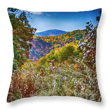 The Road To Cataloochee On A Frosty Fall Morning Throw Pillow by John Haldane