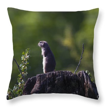 The Sentry Throw Pillow by Mike  Dawson