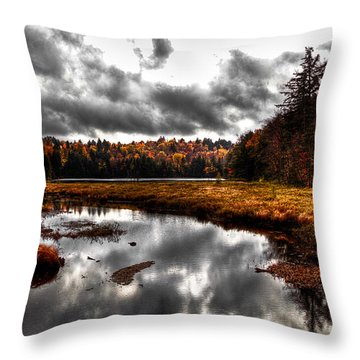 The South End Of Cary Lake Throw Pillow by David Patterson
