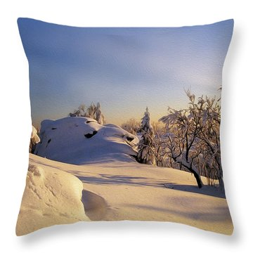 The Sunset Throw Pillow by Aged Pixel