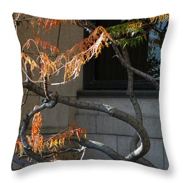 The View Throw Pillow by Joseph Yarbrough