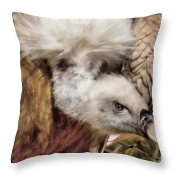 The Vulture Throw Pillow by Ernie Echols