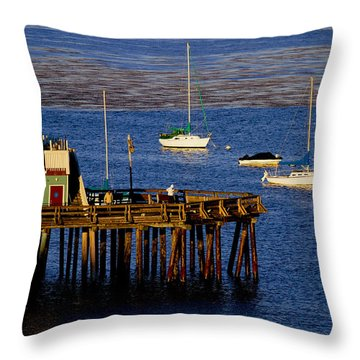 The Wharf Throw Pillow by Tom Kelly