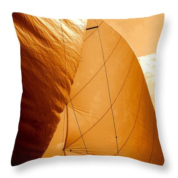 The Wind Will Carry Me Throw Pillow by Rick Todaro