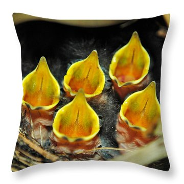 The Wren Quintet Throw Pillow by Kelly Nowak