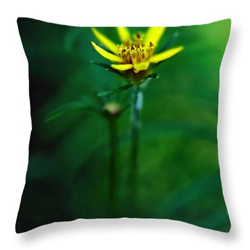 There's A Secret World Throw Pillow by Lois Bryan