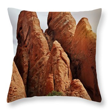Thick Fins Throw Pillow by Marty Koch