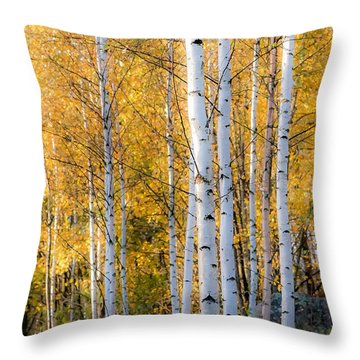 Thin Birches Throw Pillow by Ari Salmela