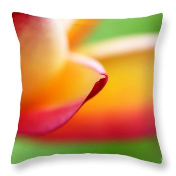 This Part Of The Journey Throw Pillow by C Ray  Roth