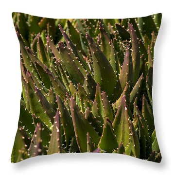 Thorns On Succulent Throw Pillow by Garry Gay