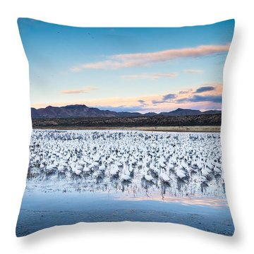 Snow Geese And Sandhill Cranes Before The Sunrise Flight - Bosque Del Apache, New Mexico Throw Pillow by Ellie Teramoto