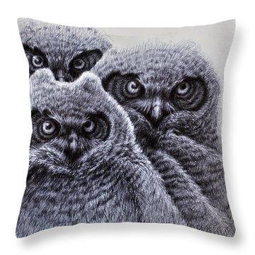 Three Amigos Throw Pillow by Rick Hansen