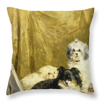 Three Dogs Throw Pillow by Charles van den Eycken