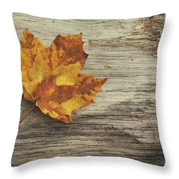 Three Leaves Throw Pillow by Scott Norris