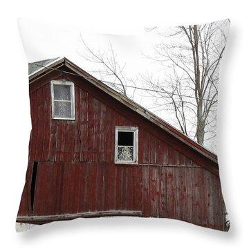 Three Windows Throw Pillow by Debbie Finley