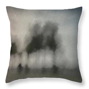 Through A Train Window Throw Pillow by Carol Leigh