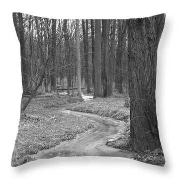 Through The Woods Throw Pillow by Sara  Raber