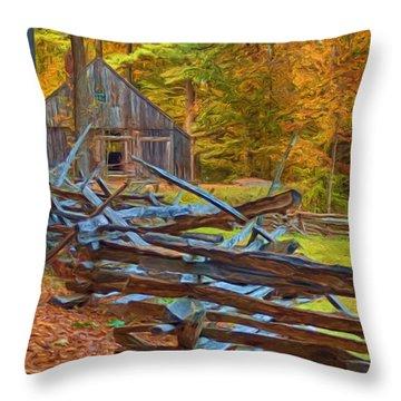 Through Time Throw Pillow by Joann Vitali