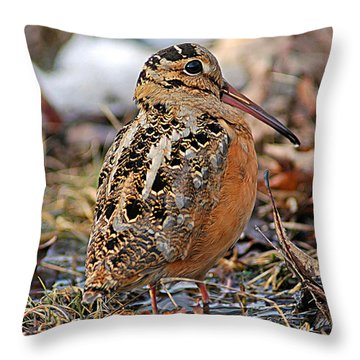 Timberdoodle The American Woodcock Throw Pillow by Timothy Flanigan