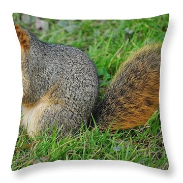 Time To Feast Throw Pillow by Frozen in Time Fine Art Photography