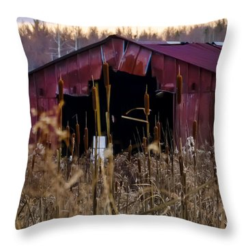 Tin Roof Rusted Throw Pillow by Bill Cannon