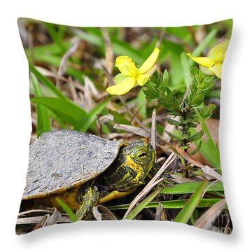 Tiny Turtle Close Up Throw Pillow by Al Powell Photography USA