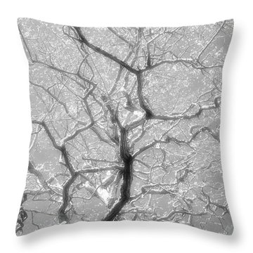 To Be Or Not To Be Throw Pillow by Newel Hunter