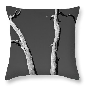 To The Moon Throw Pillow by Steven Ralser