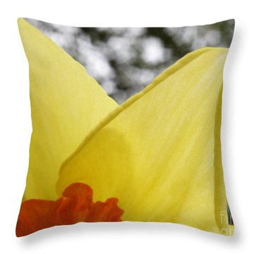 Today Throw Pillow by Lainie Wrightson