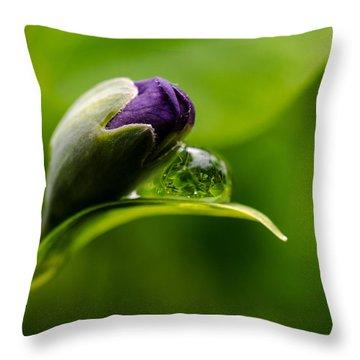 Topsy Turvy World In A Raindrop Throw Pillow by Jordan Blackstone