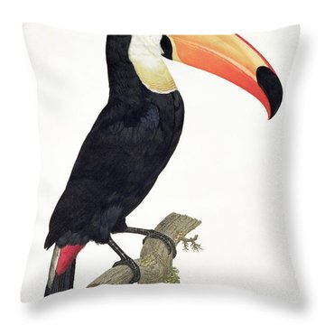 Toucan Throw Pillow by Jacques Barraband