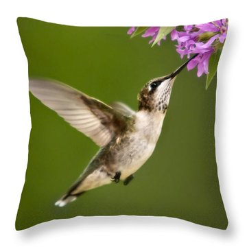 Touched Throw Pillow by Christina Rollo