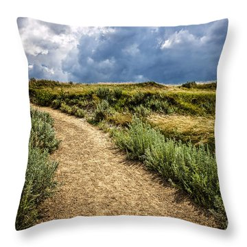 Trail In Badlands In Alberta Canada Throw Pillow by Elena Elisseeva
