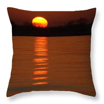 Trailing Sun Throw Pillow by Karol Livote