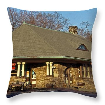 Train Stations And Libraries Throw Pillow by Skip Willits