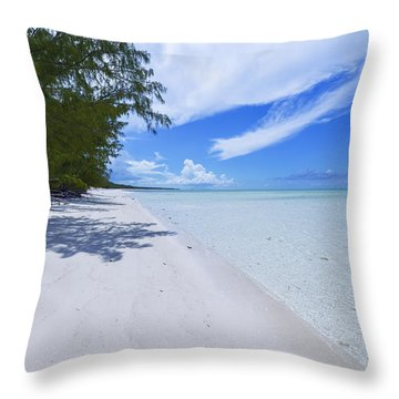 Tranquility Throw Pillow by Chad Dutson