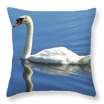 Tranquility Throw Pillow by Frozen in Time Fine Art Photography