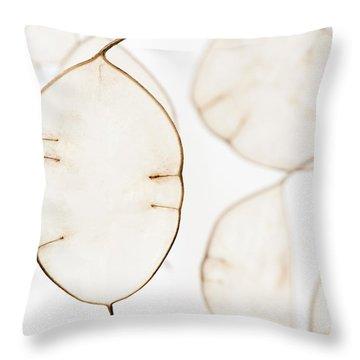 Translucent Throw Pillow by Anne Gilbert