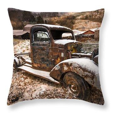 Treasures Throw Pillow by Debra and Dave Vanderlaan