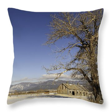 Tree With Barn Throw Pillow by Sue Smith