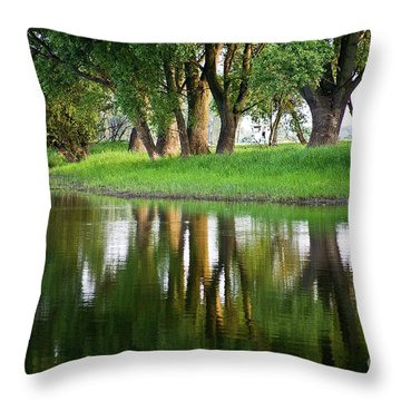 Trees Reflection On The Lake Throw Pillow by Heiko Koehrer-Wagner