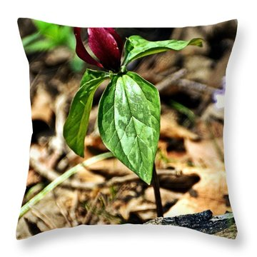 Trillium Deluxe Throw Pillow by Marty Koch